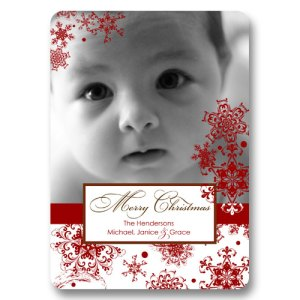 Falling Snowflakes Holiday Photo Cards