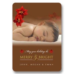 Poinsettia Baby Holiday Photo Cards