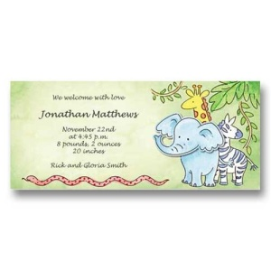 Safari Zoo Animals Baby Birth Announcements