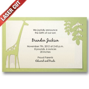 Giraffe Birth Announcements